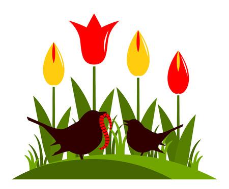 baby moeder: vector bosje tulpen en moeder vogel voeden baby vogel op een witte achtergrond