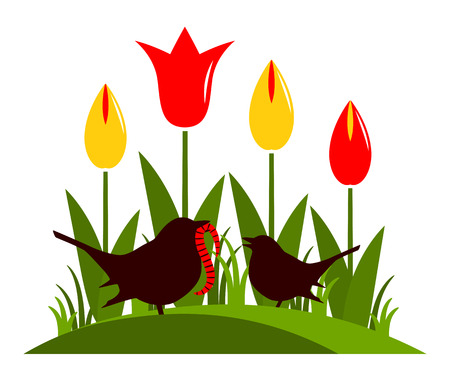 clump: vector clump of tulips and mother bird feeding baby bird isolated on white background