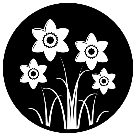 clump: vector clump of daffodils isolated on black round