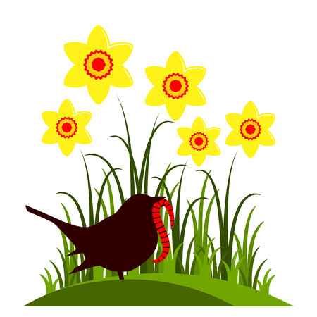 clump: vector clump of daffodils and bird with worm isolated on white background Illustration