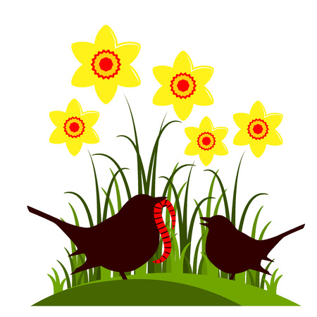 fledgling: vector clump of daffodils and mother bird feeding baby bird isolated on white background