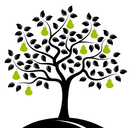 vector pear tree isolated on white background Illustration