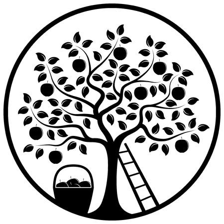 リンゴの木のベクトル、梯子、白い背景で隔離のラウンドでりんごのバスケット
