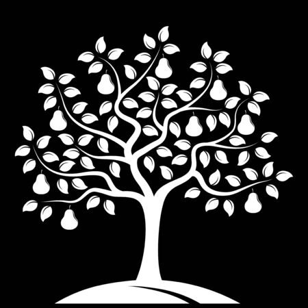 pear tree: vector pear tree isolated on black background Illustration