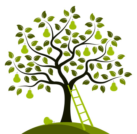 pear tree:  pear tree and ladder isolated on white background Illustration