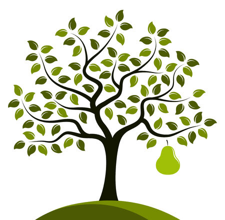 vector perenboom met een grote peer geïsoleerd op een witte achtergrond Vector Illustratie