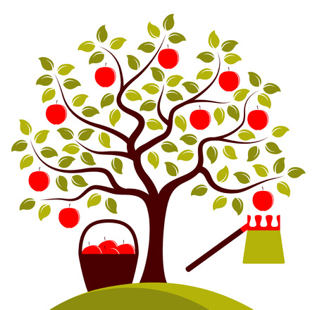 picker: vector apple tree, basket of apples and fruit picker isolated on white background