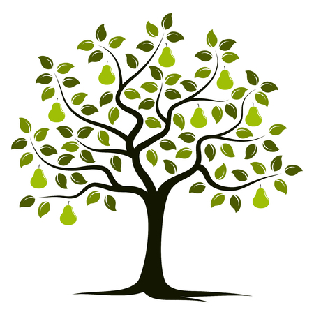 vector pear tree isolated on white background Иллюстрация
