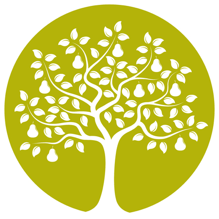 pear tree: vector pear tree isolated on green round Illustration