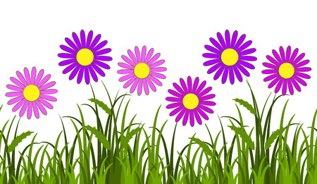 vector seamless border with pink daisies in grass isolated on white background Vector