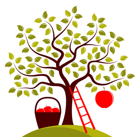 big apple: vector apple tree with one big apple, ladder and basket of apples isolated on white background