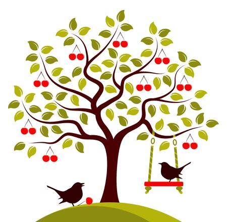 drupe: vector cherry tree with swing and birds isolated on white background