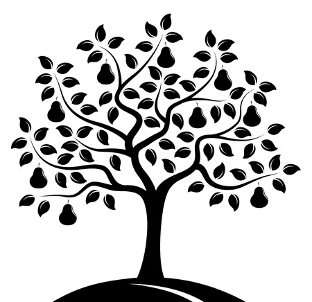 tree isolated: vector �rbol de pera aisladas sobre fondo blanco Vectores