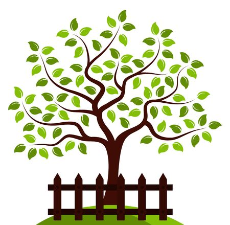 picket: vector tree behind picket fence isolated on white background