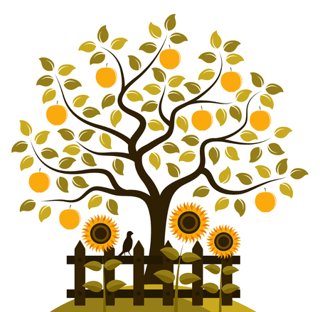 vector apple tree and picket fence with sunflowers isolated on white background Vector