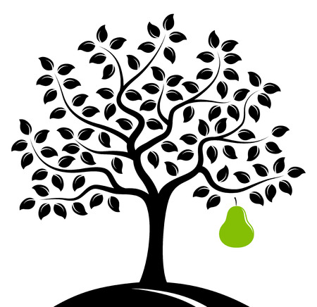 pear tree with one big pear isolated on white background Ilustração