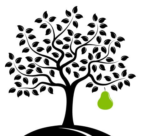 perenboom met een grote peer geïsoleerd op een witte achtergrond