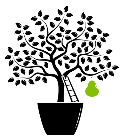 pear tree: vector pear tree with one big pear in pot isolated on white background Illustration
