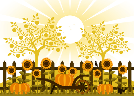 sun flowers: vector pumpkins and sunflowers along picket fence Illustration