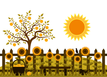 vector apple tree and picket fence with sunflowers Vector