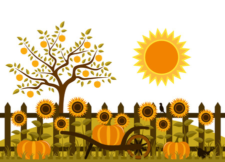 picket fence: vector pumpkins and sunflowers along picket fence Illustration