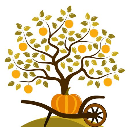 orchards: vector apple tree and hand barrow with pumpkin isolated on white background