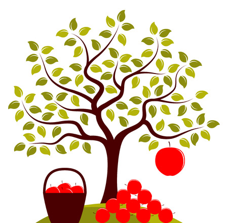apples basket: vector apple tree with one big apple and basket of apples with pile of apples