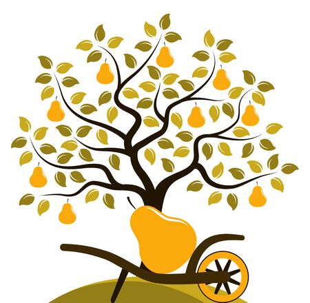 vector pear tree and hand barrow with one big pear isolated on white background