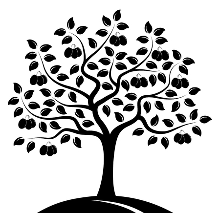 vector plum tree isolated on white background Banco de Imagens - 45054120