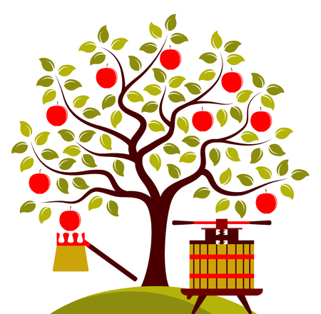 picker: vector apple tree, fruit picker and fruit press isolated on white background Illustration