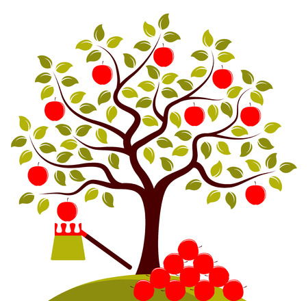 picker: vector apple tree, fruit picker and pile of apples isolated on white background