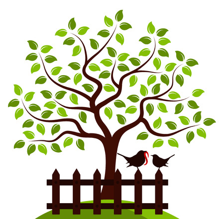 white picket fence: vector tree and picket fence with mother bird and baby bird isolated on white background