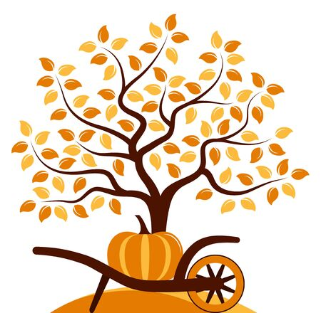 barrow: vector autumn tree and hand barrow with pumpkin isolated on white background Illustration