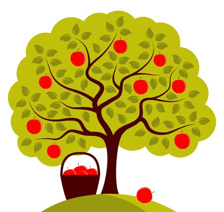 apfelbaum: Vektor-Apfelbaum und Korb von Äpfeln isoliert auf weißem Hintergrund
