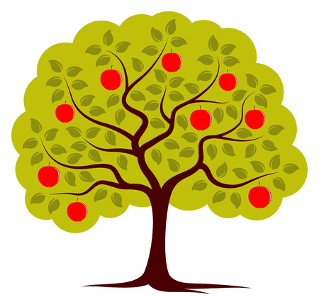 apple tree isolated: vector apple tree isolated on white background