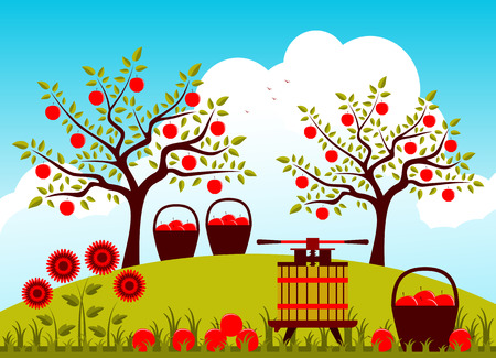 basket: vector fruit press and baskets of apples in apple orchard Illustration