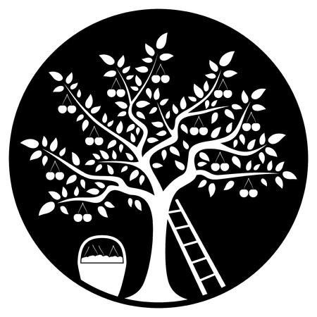 drupe: vector cherry tree, ladder and basket of cherries isolated on black round