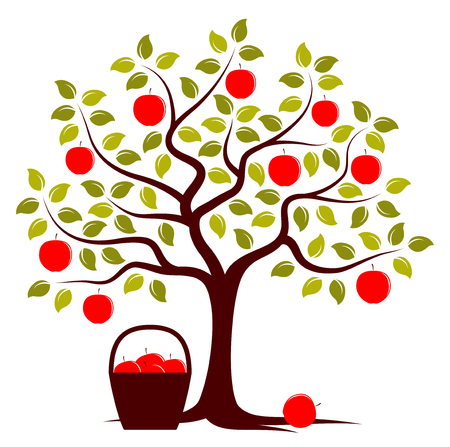 vector apple tree and basket of apples isolated on white background Illustration