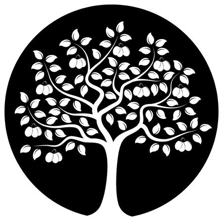 drupe: vector plum tree isolated on black round