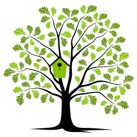 bird box: vector oak tree with nesting bird box isolated on white background