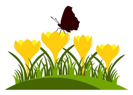 clump: vector clump of crocuses and butterfly isolated on white background Illustration