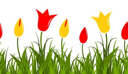 tulips isolated on white background: seamless vector tulips border isolated on white background