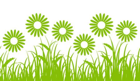 Frontera inconsútil del vector con las margaritas en hierba aislados en el fondo blanco