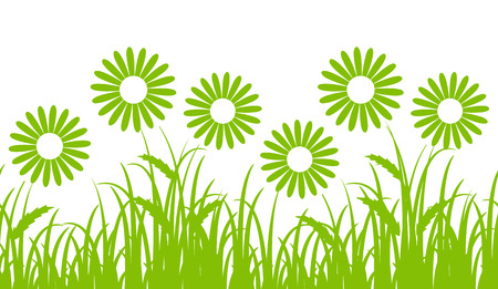daisy flower: vector seamless border with daisies in grass isolated on white background