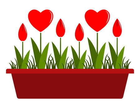 vector heart flowers in planter isolated on white background