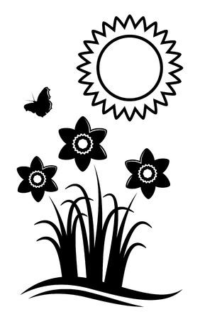 narcisi vettoriali e sole isolato su sfondo bianco