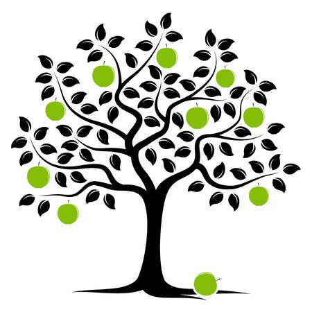 fruit tree: vector apple tree isolated on white background