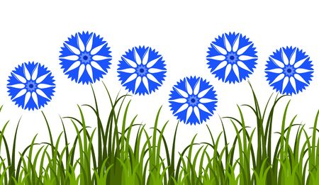 cornflowers: vector seamless border with cornflowers in grass isolated on white background Illustration