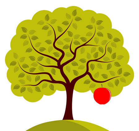 big apple: vector apple tree with one big apple isolated on white background Illustration