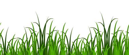 grass border: seamless grass border isolated on white background Illustration